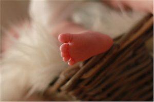 Babybilder Stuttgart Babyfotos