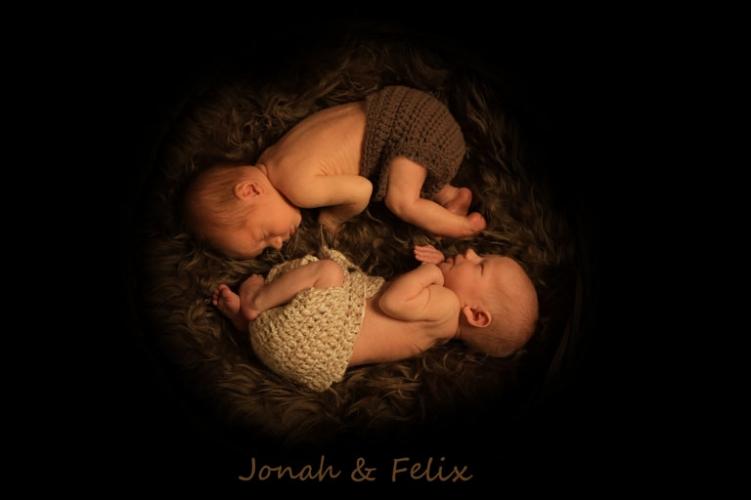 babyfotos stuttgart zwillinge