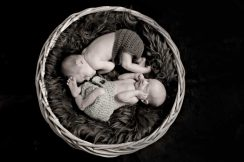 babybilder zwillinge fotostudio