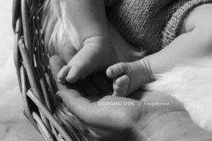 babyfotos stuttgart esslingen