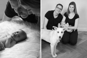 babyfotos stuttgart hund